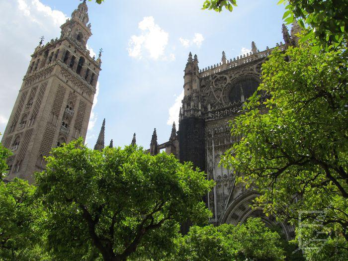 Katedra z minaretem