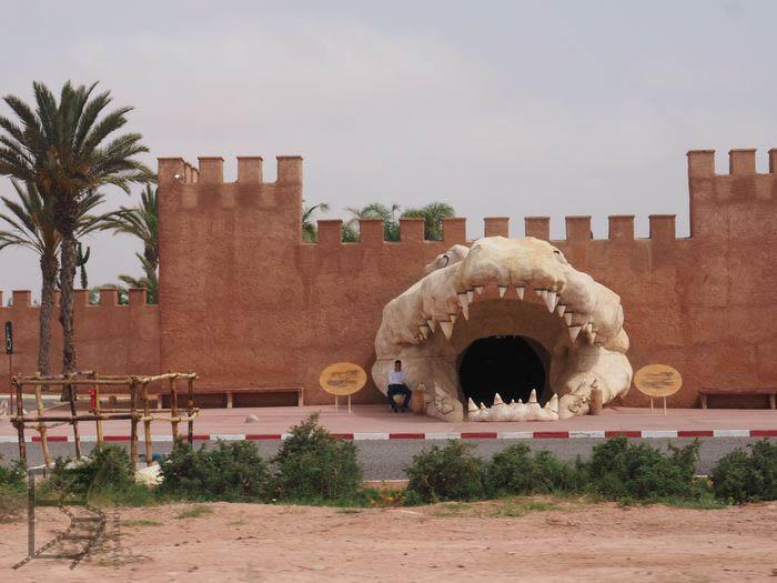 Agadir - dom gadów