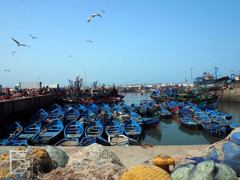 Port z charakterystycznymi niebieskimi łodziami (Essaouira)