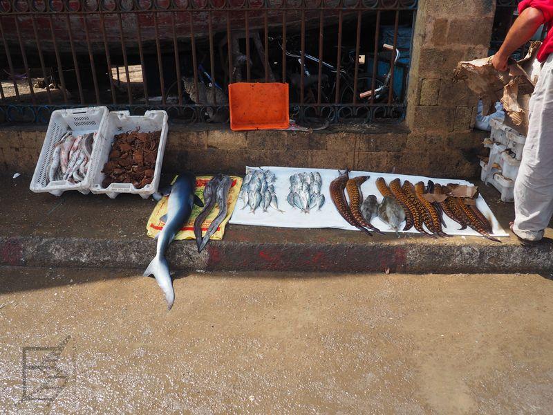 Targ rybny ze świeżymi produktami