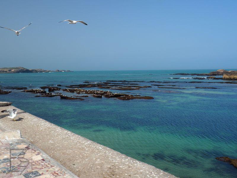 Widok z muru na ocean