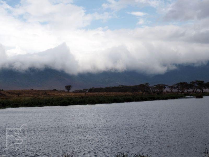 Widok z krateru Ngorongoro