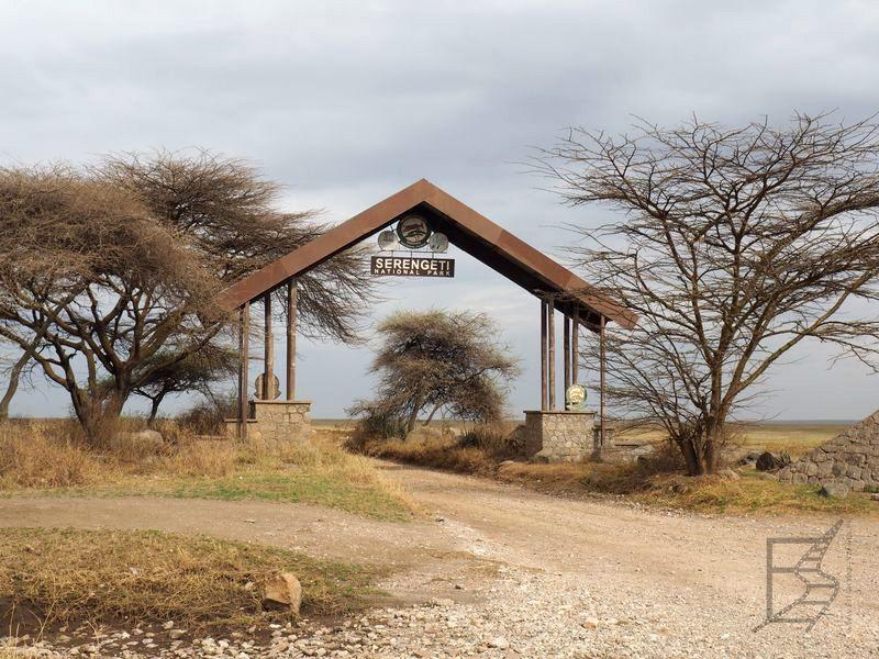 Brama do Serengeti