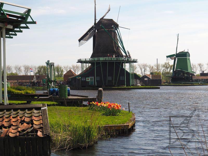 Zaanse Schans - holenderski skansen wiatraków