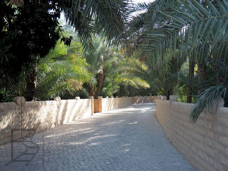 Oaza Al-Ajn (Al Ain Oasis)