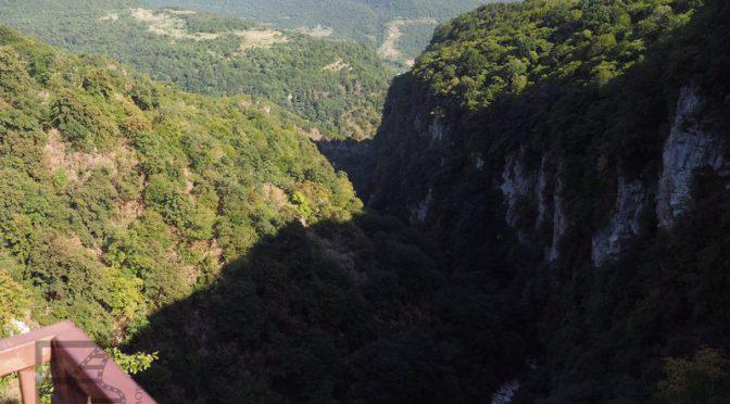 Kanion Okatse i spacer nad drzewami