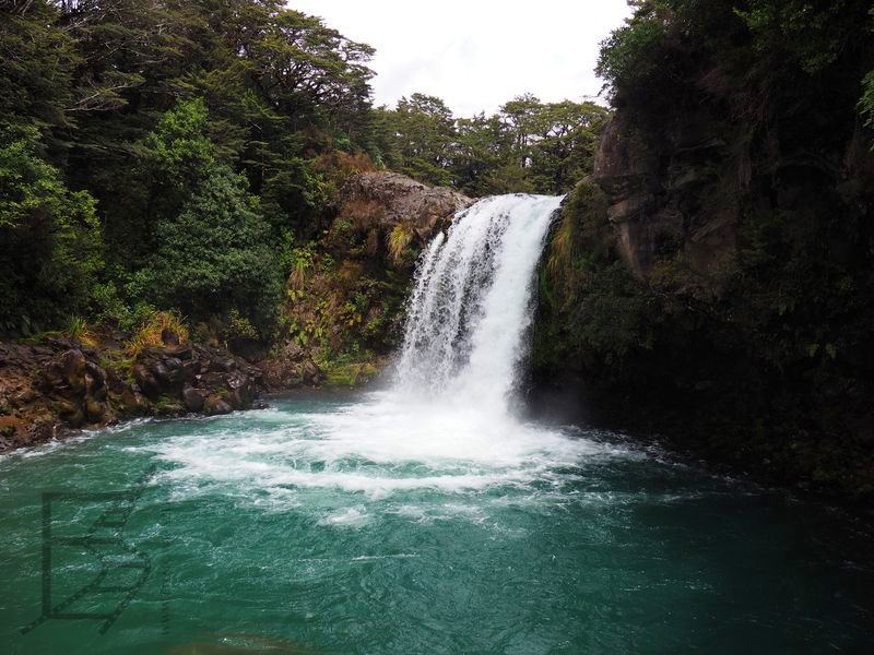Wodospad Tawhai (tu się kąpał Gollum)
