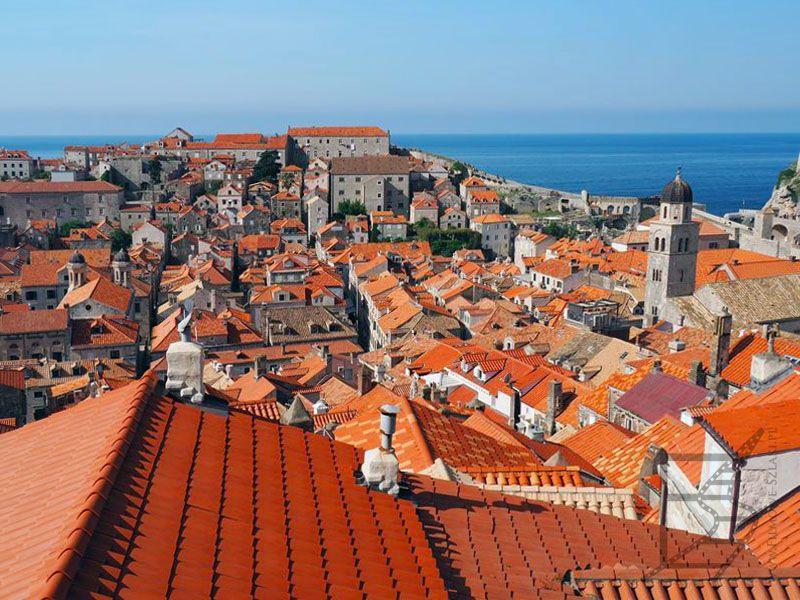 Dachy także wykorzystywano w GOT
