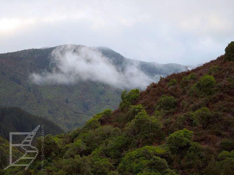 Krajobraz PN Abel Tasman
