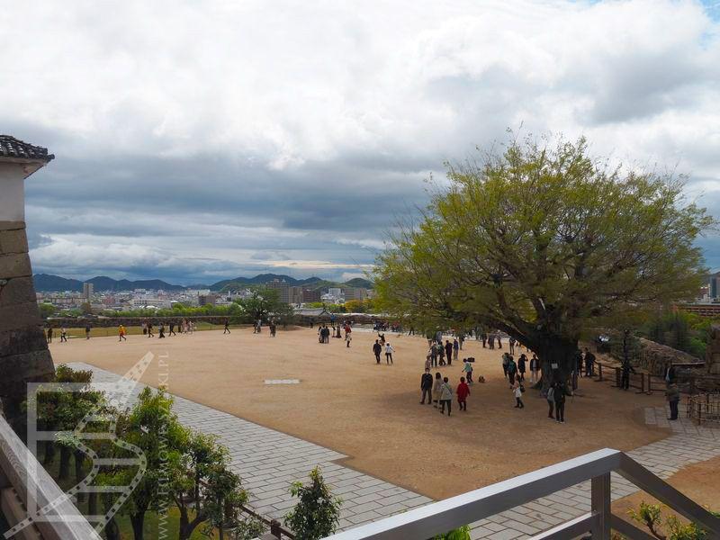 Widok na dziedziniec zamkowy