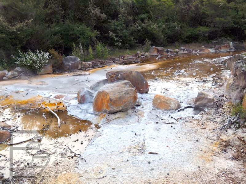 Geotermalne zjawiska w Parku Kuirau