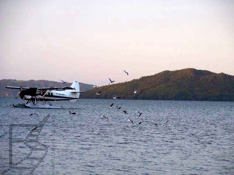 Jezioro Rotorua jest pełne ptactwa i czasem samolotów