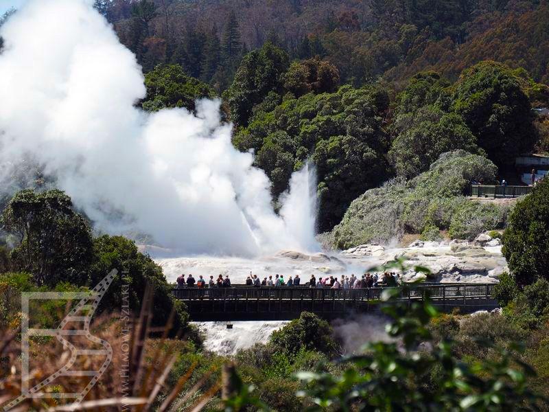 Te Puia (Rotorua)
