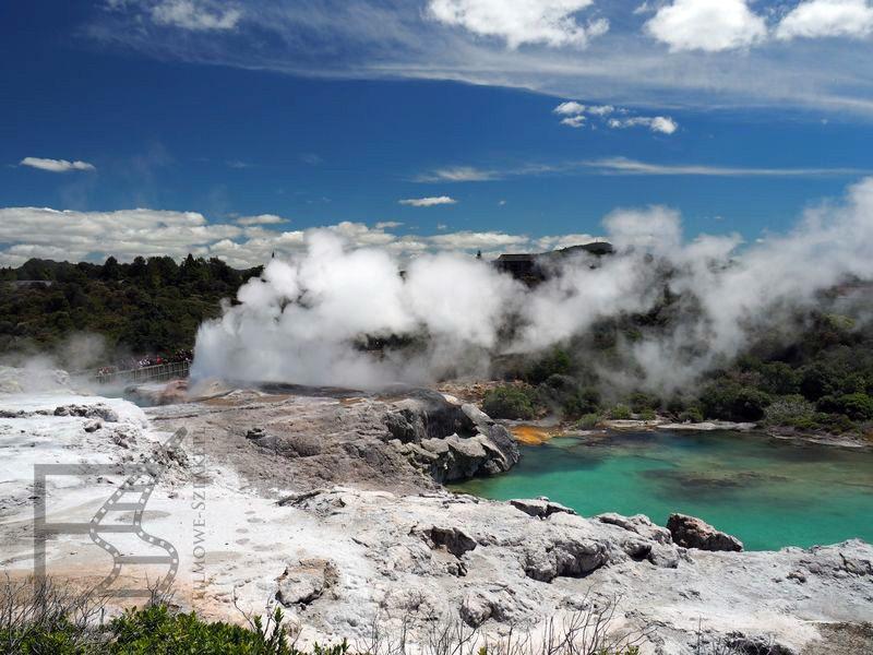 Rotorua: Te Puia