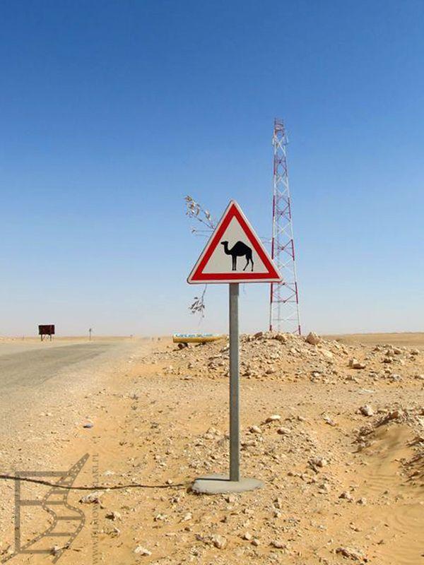 Pustynia na południu Tunezji