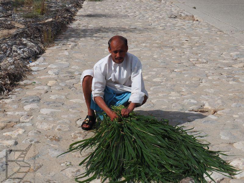 Mężczyzna przy drodze (Oman)