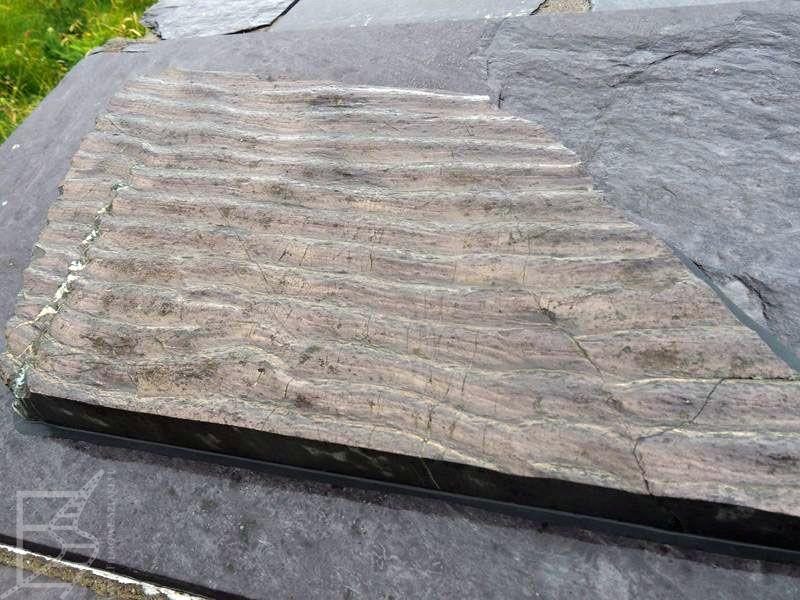 Ślady tetrapodów