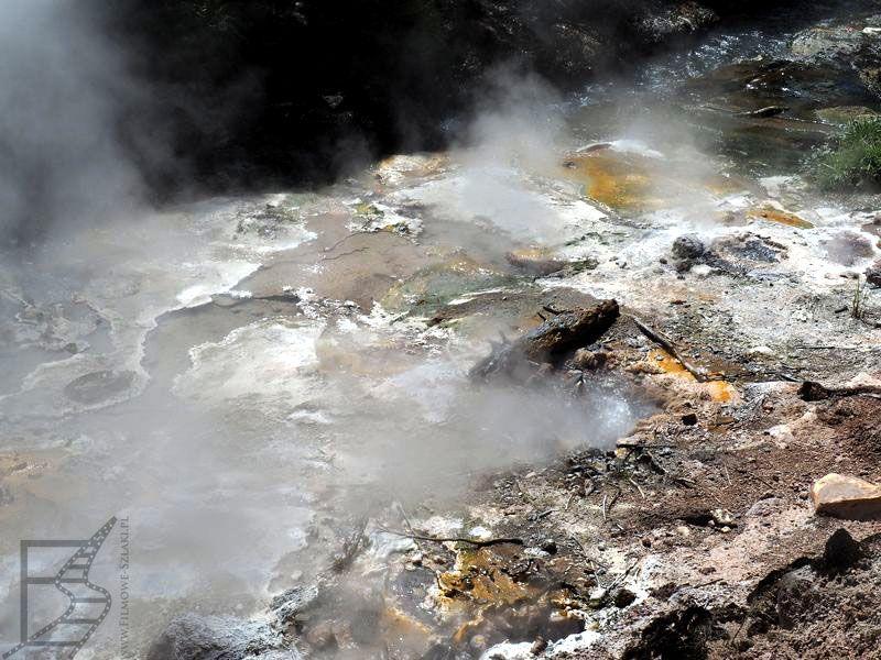 Gorące źródła - Waimangu Volcanic Valley