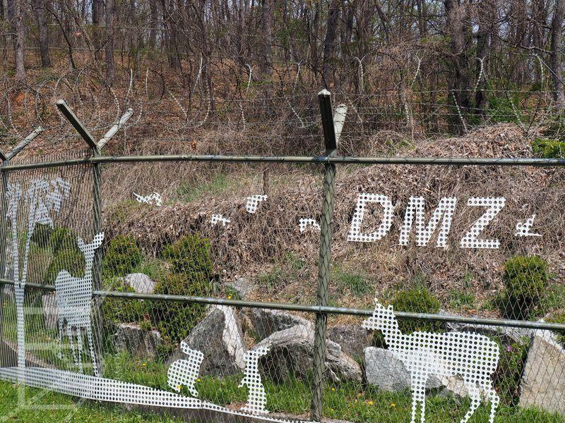 Zaminowany fragment DMZ