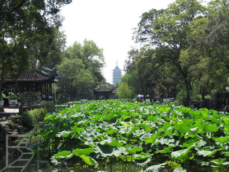 Ogród Dobrego Zarządcy w Suzhou