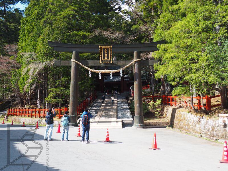 Brama tori prowadząca do Futurasan