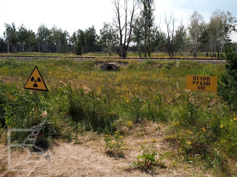 Strefa Wykluczenia wokół Czarnobyla