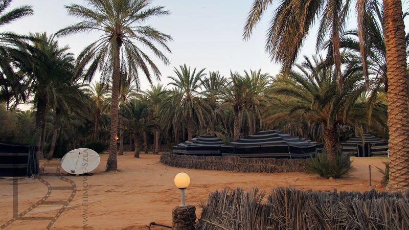 Nocleg w oazie Ghilane