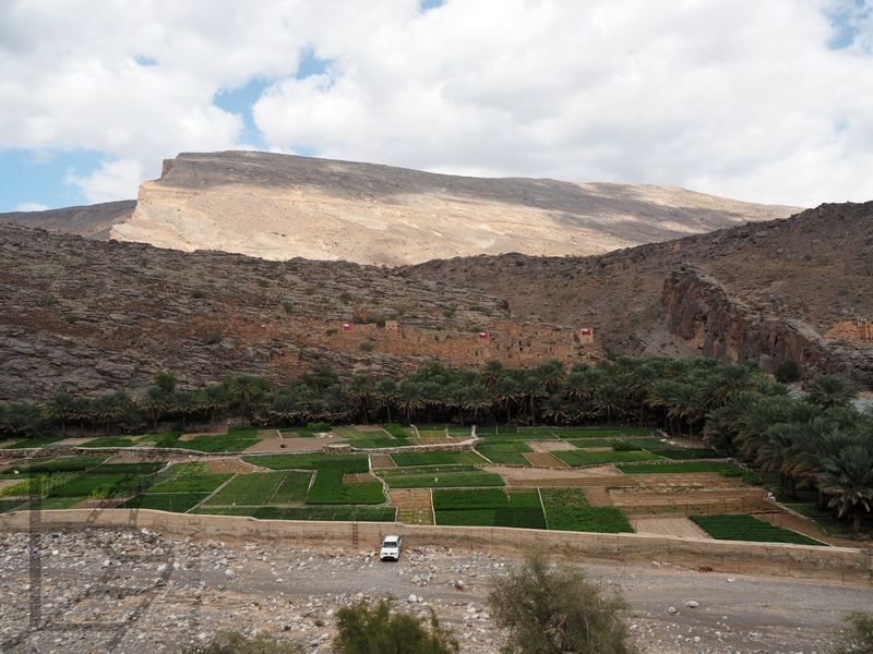 Martwa dolina (Valley Necrosis)