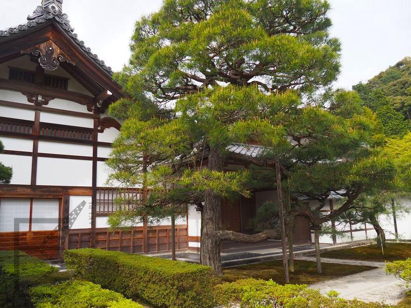 Srebrny Pawilon w Ginkaku-ji (Kioto)
