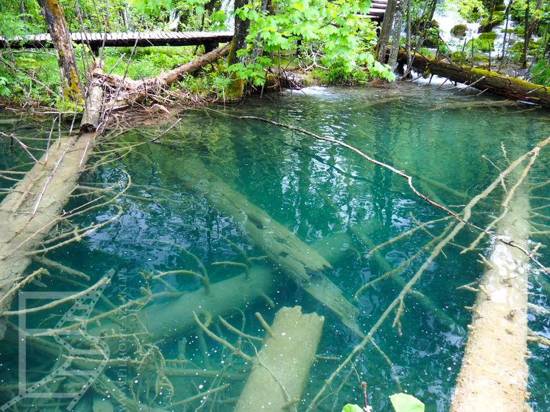 Piękna woda w jeziorach Plitwickich