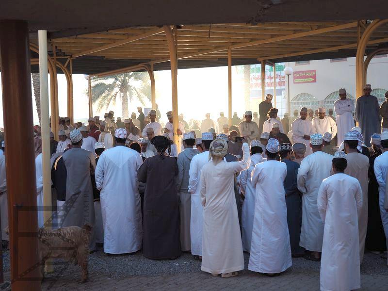 Licytacja kóz na targu (Nizwa, Oman)