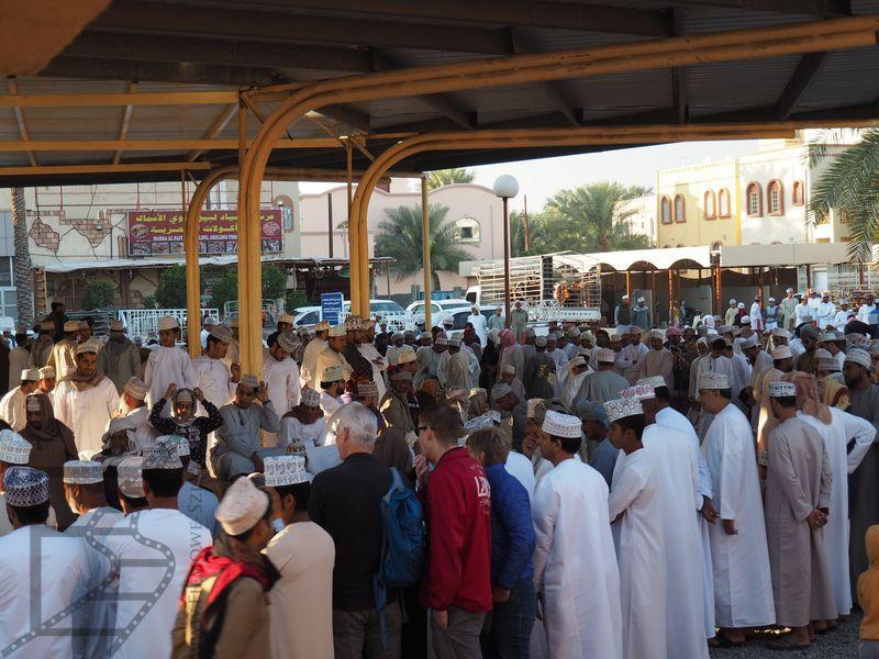 Prezentacja kóz na targu (Nizwa, Oman)