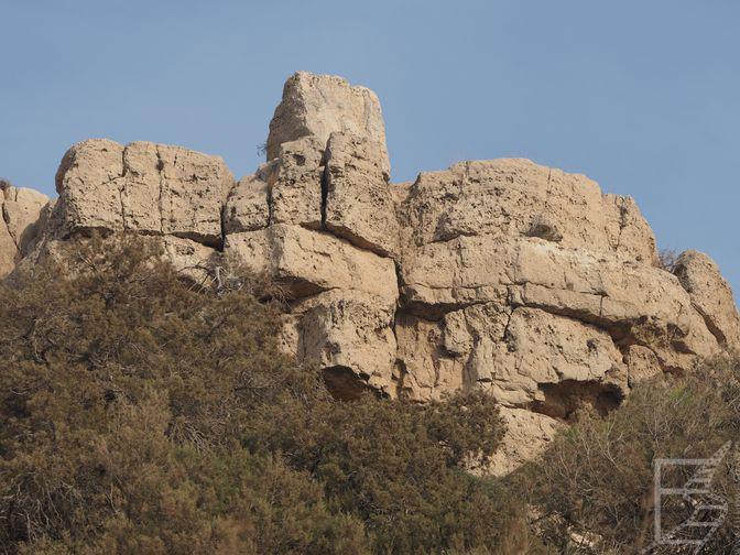 Roślinność i skały (Dana)
