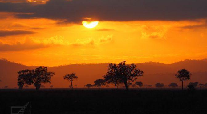Zachód słońca w Mikumi (Tanzania)