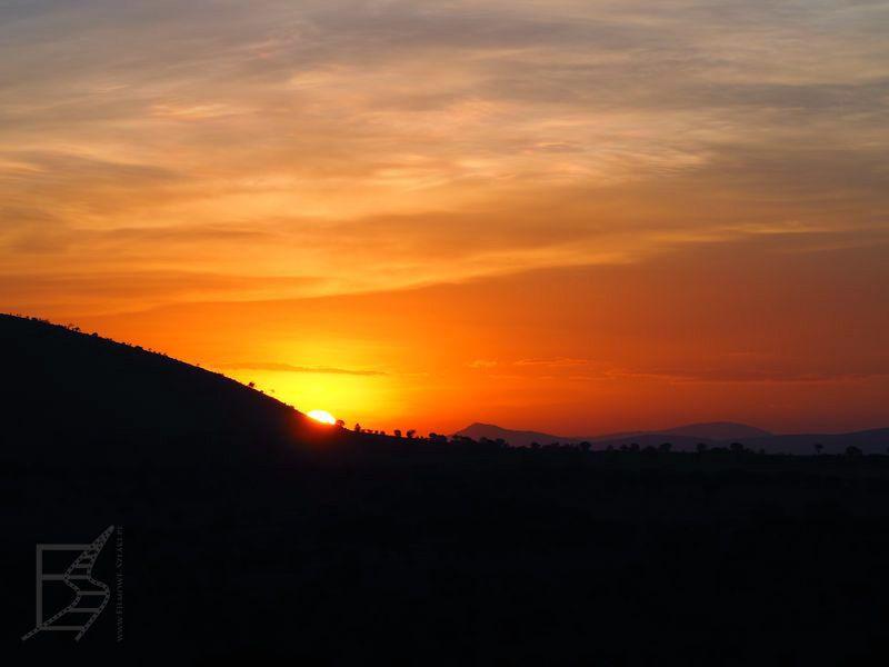 Wschód słońca nad Serengeti