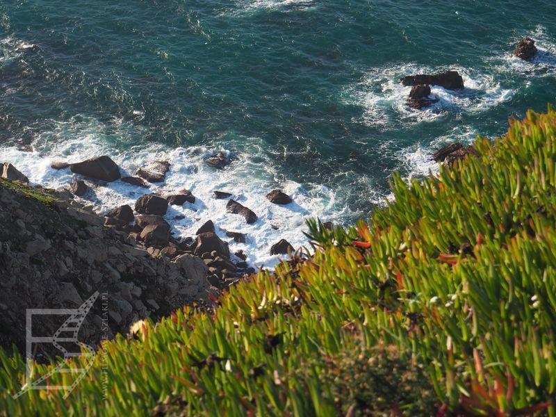 Widok na ocean (przylądek Roca)