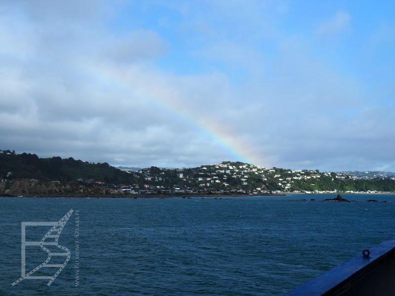 Wellington z promu (Nowa Zelandia na własną rękę)