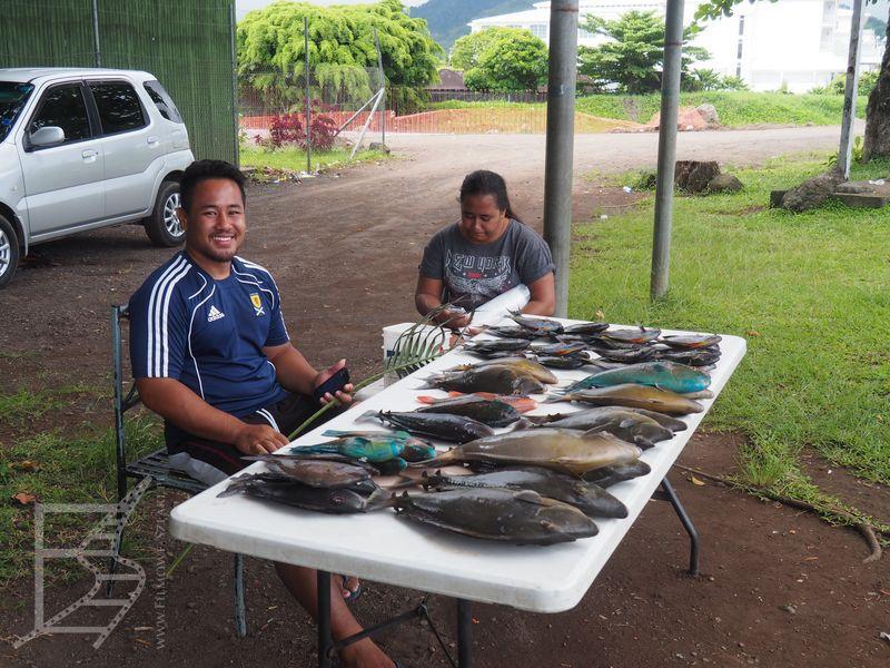 Przydrożna sprzedaż ryb (Apia, Samoa)