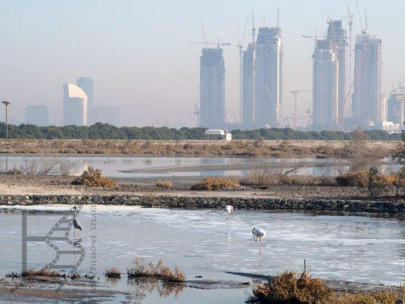 Ras Al Khor (Dubaj)