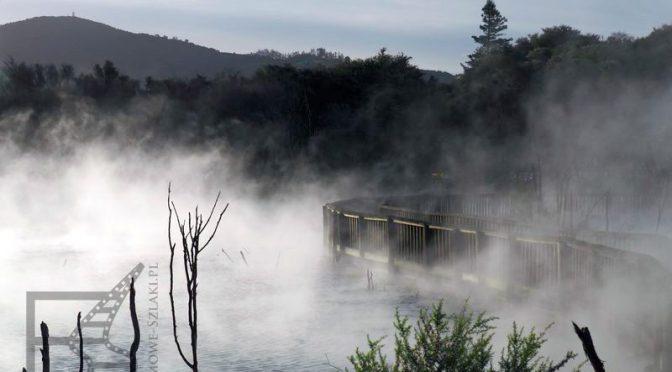 Rotorua, Te Puia czyli turystyczne centrum Nowej Zelandii
