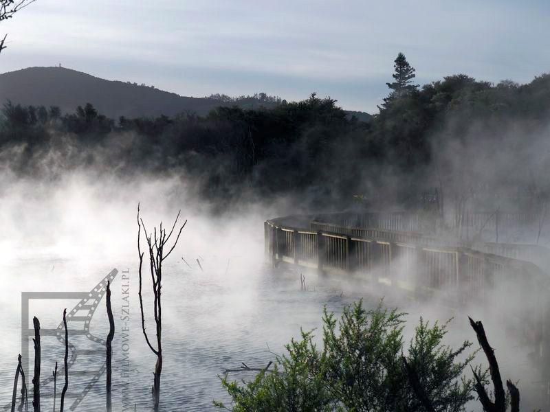 Rotorua: Kuirau Park