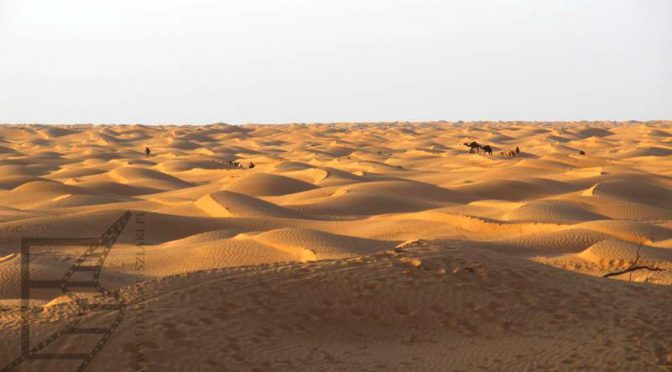 Ksar Ghilane, oaza na pustyni w Tunezji