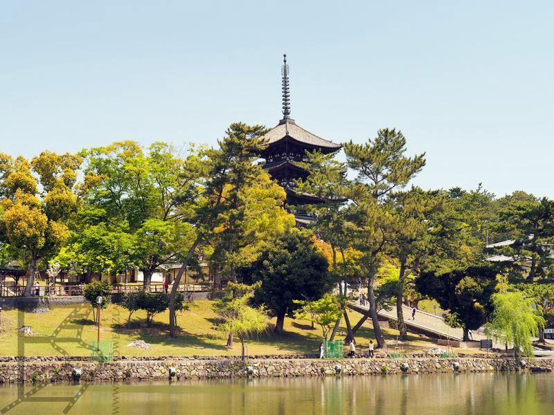 Widok na park w Narze