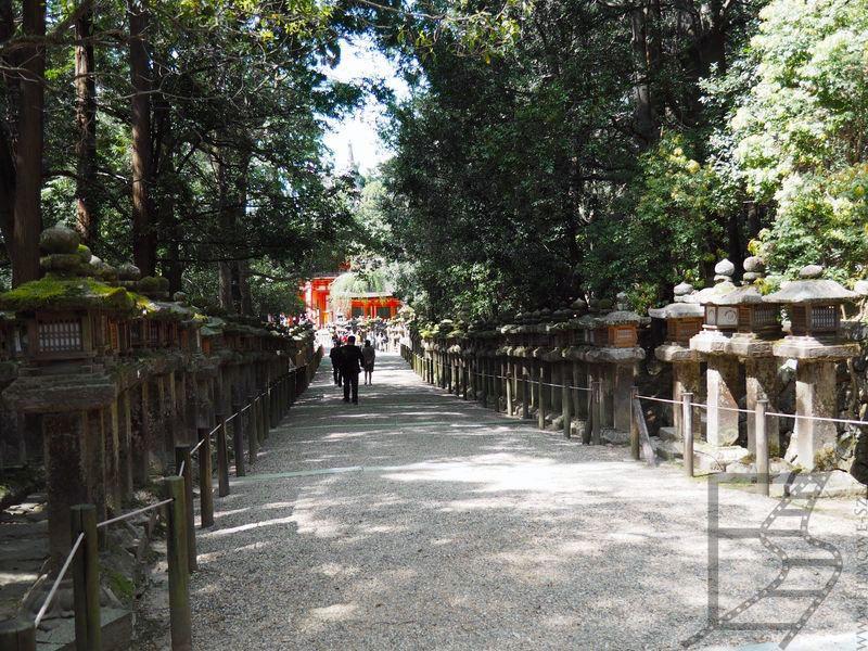 Aleja latarni wotywnych - ishi-dōrō (Nara, Japonia)
