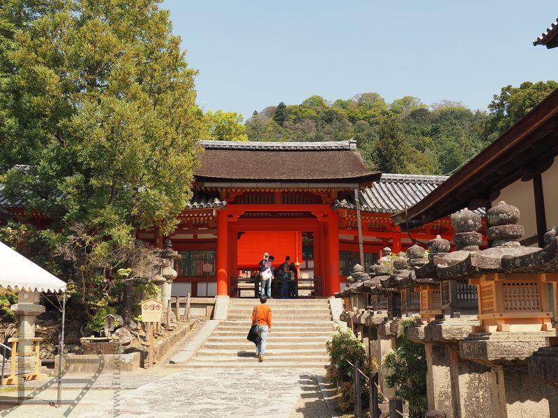 Świątynie w Nara Park