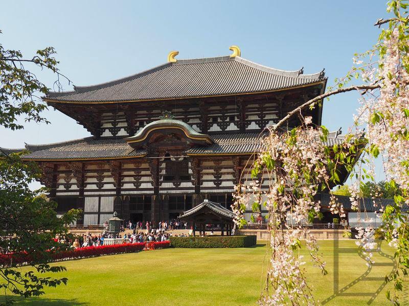 Tōdai-ji, pawilon Wielkiego Buddy