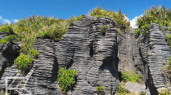 Punakaiki (Pancake Rocks), czyli Naleśnikowe Skały