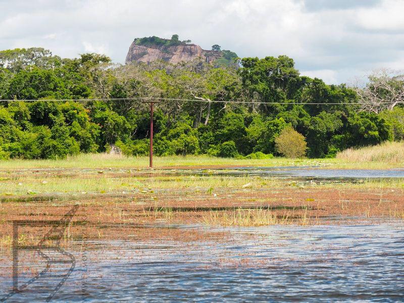 Sigirija widziana z wody