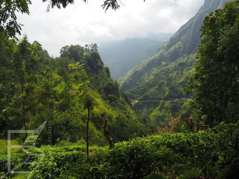 Okolice Elli, Sri Lanka