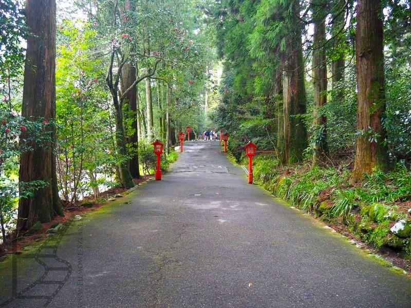 Droga do świątyni Hakone